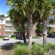 Windscape Apartments Contact Agent Apartments 27670 Us Hwy 98