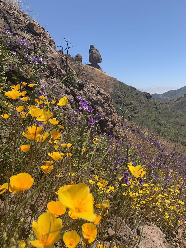 Split Rock/ Balanced Rock Trail: 12896 Yerba Buena Rd, Malibu, CA