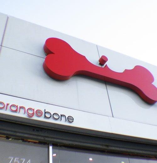 OrangeBone