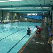 Swimworld Swimming Pools 452 Springvale Rd Glen Waverley Victoria Phone Number Yelp