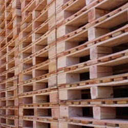 All Good Pallets - 30 Photos - Packing Services - 6756