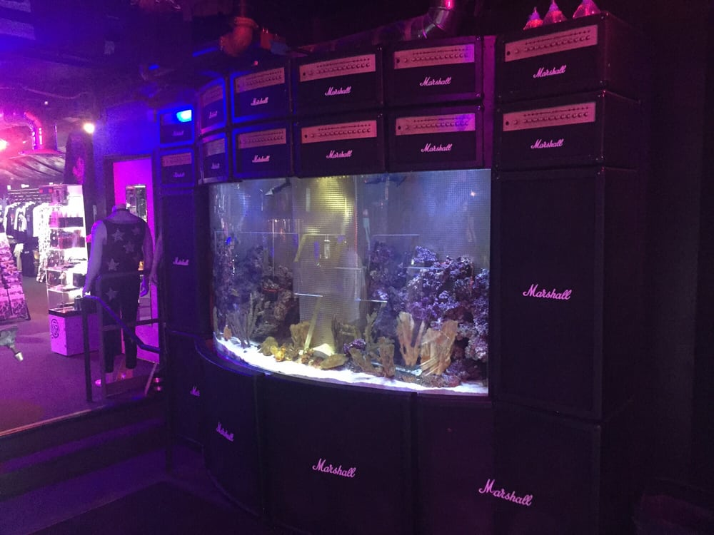 Speaker fish tank i thought it was pretty dope yelp for Fish tank las vegas