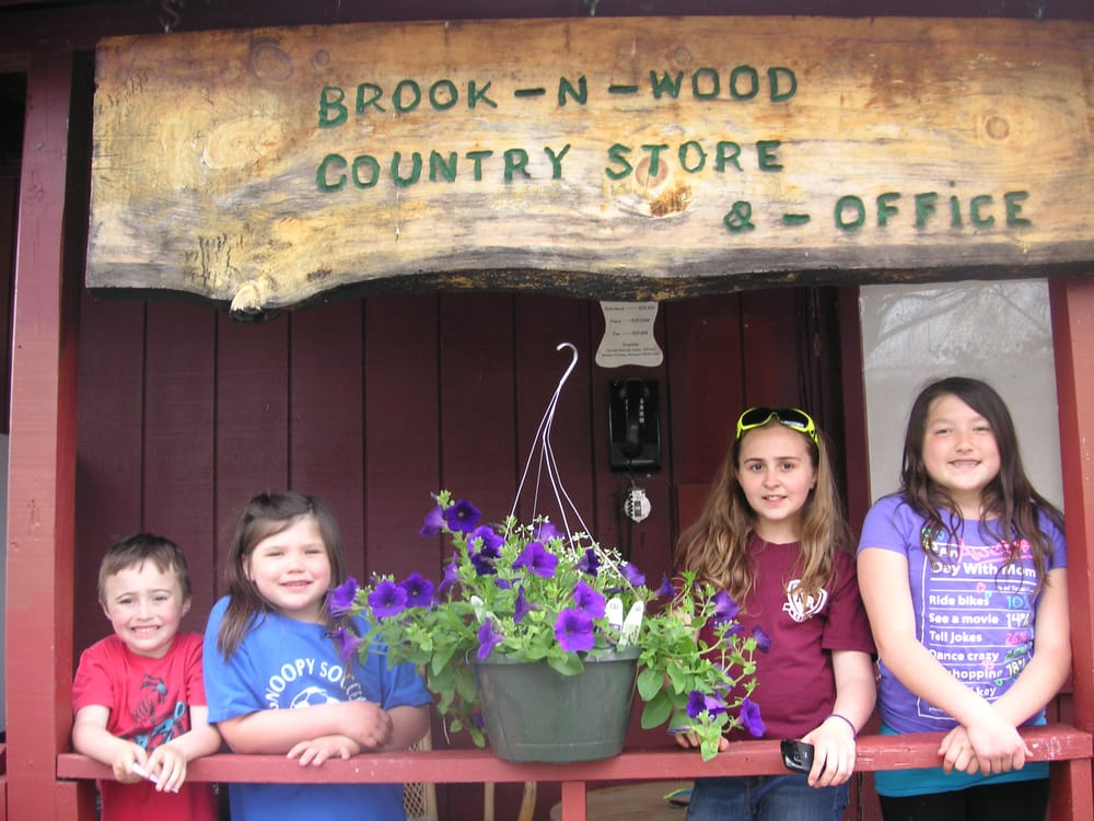 Brook N Wood Campground: 1947 County Rt 8, Elizaville, NY
