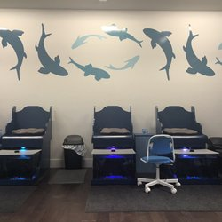 Photo Of Garra Fish Spa Clearwater Fl United States