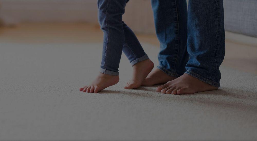 Ecodry NY Carpet Cleaning: 1103 Jervis Ave, Rome, NY