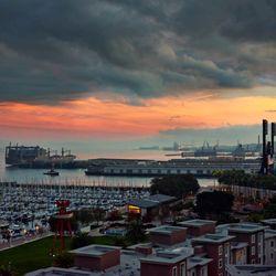 South Beach Marina Apartments - (New) 28 Photos & 47 Reviews