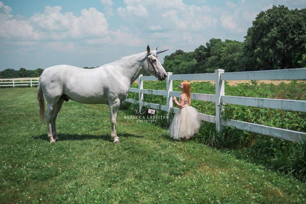 Rebecca Lassiter Photography