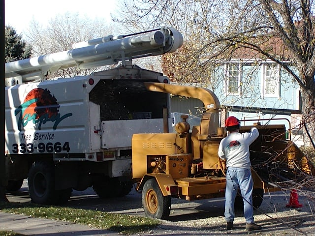 Torpy Tree Service: 2856 S 167th St, Omaha, NE