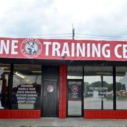 Tampa Bay K-9 Solutions - 64 Photos - Pet Training - 9879 Us Hwy 41