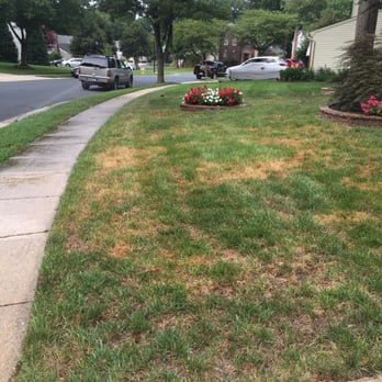 Photo Of TruGreen Lawn Care   Gaithersburg, MD, United States