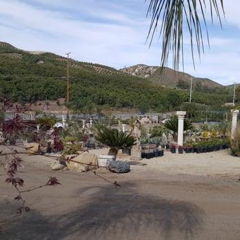 Photo Of Elegant Garden Nursery Moorpark Ca United States The Other Half