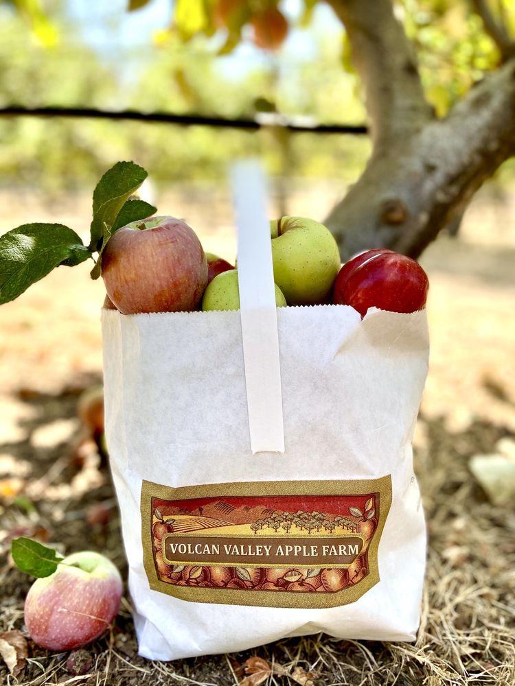 Volcan Valley Apple Farm: 1284 Julian Orchards Dr, Julian, CA