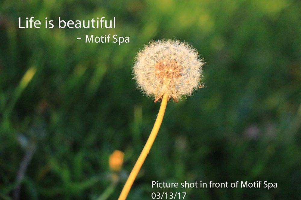 Motif Massage and Foot Spa - 14 Photos & 217 Reviews - Massage ...
