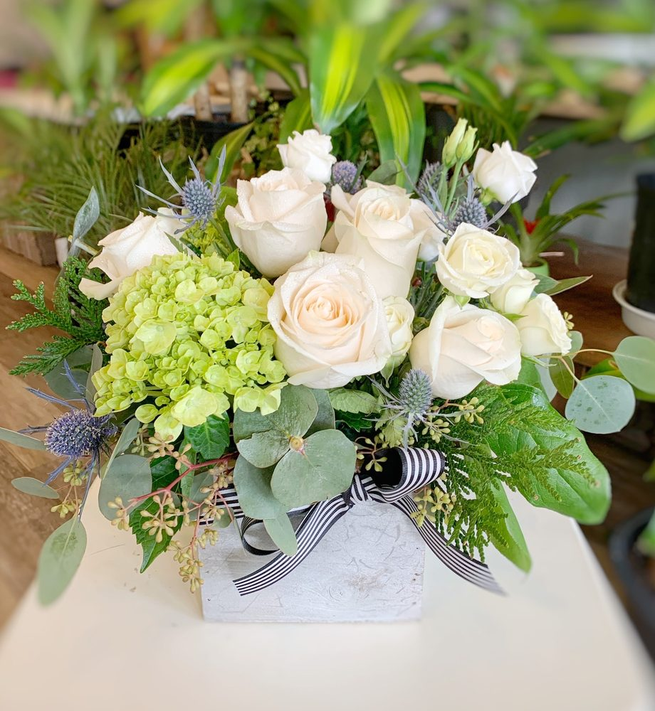 Esmé Flowers: 741 Anderson Ave, Cliffside Park, NJ
