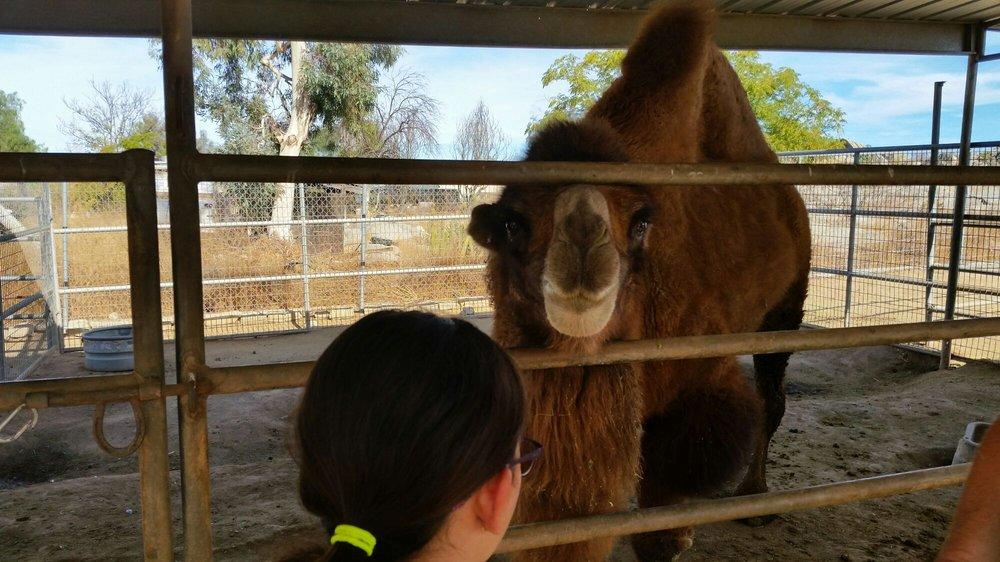 Mr Joe's Farm: 20850 Old Elsinore Rd, Perris, CA