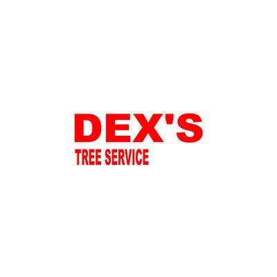 Dex's Tree Service: 2825 Frisby St, Edwardsville, IL