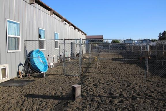 Best Friends Obedience and Agility School and Dog Daycare: 2660 SW 3rd St, Corvallis, OR