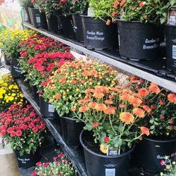 Walmart Garden Center Nurseries Gardening 1800 Lawrence St