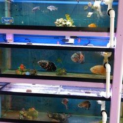 Photo Of Aquarium U0026 Garden   Federal Way, WA, United States ...
