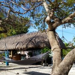 tropical cottages 64 photos 31 reviews hotels 243 61st st rh yelp com Tropical Island Cottages Tropical Cottages Key West
