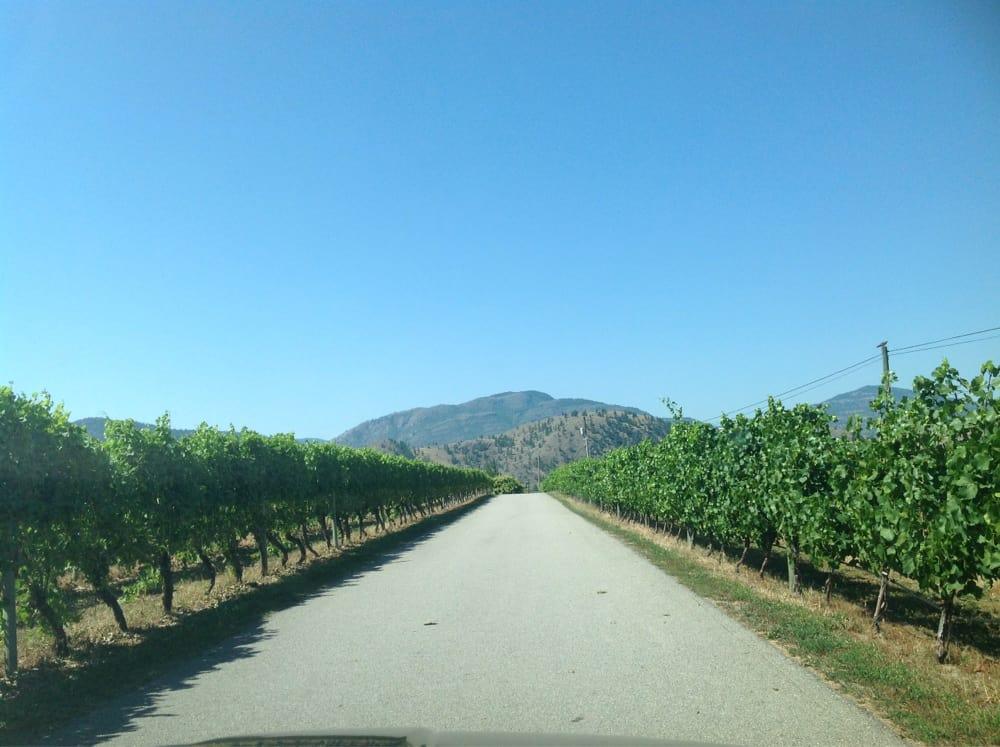 Blasted church vineyards aziende vinicole 378 parsons for Affitti di cabina okanagan bc