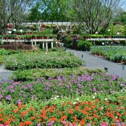 Photo Of Wise Nurseries Garden Center Statesboro Ga United States
