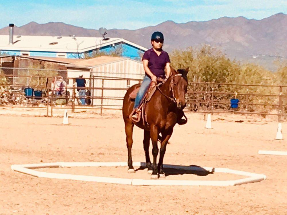 Majestic Sport Horses: 5948 S Sandario Rd, Tucson, AZ