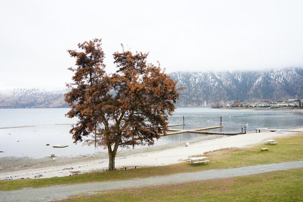 Wapato Point Resort: 1 Wapato Point Pkwy, Manson, WA