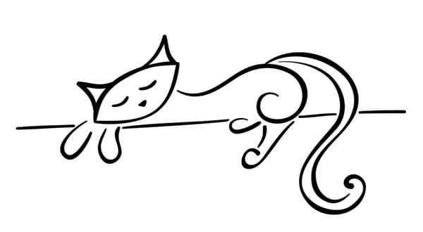 Cat Sitter Toronto Reviews