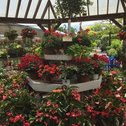 Photo Of Hollandia Nurseries Bethel Ct United States Aly This Building Is