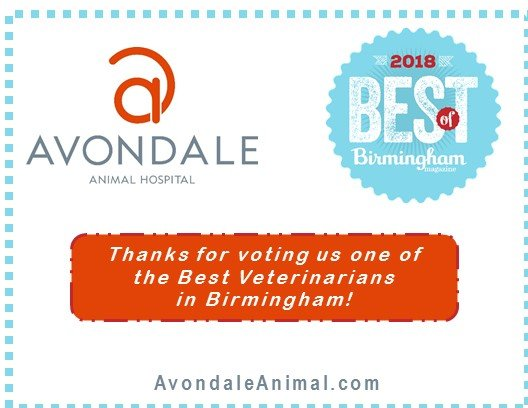 Avondale Animal Hospital: 3624 5th Ave S, Birmingham, AL