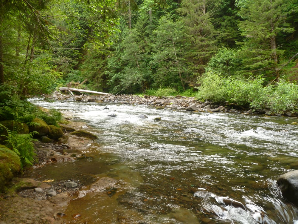 Green Canyon Campground: 2618 Mt Hood National Forest, Rhododendron, OR