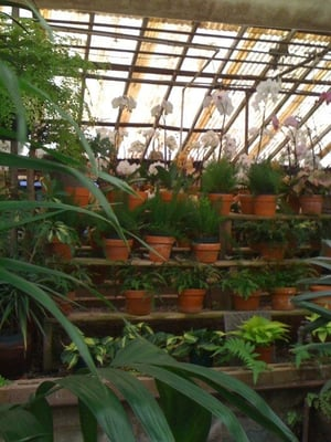 Photo Of Campbell S Greenhouses Nursery Charlotte Nc United States