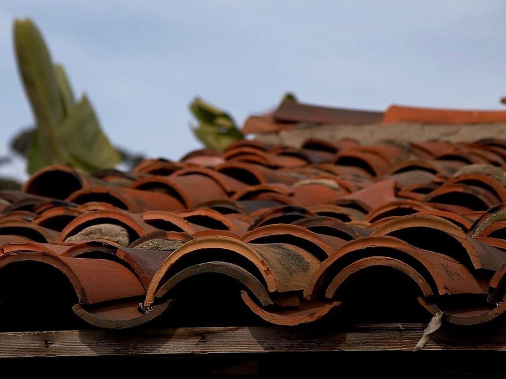 Orellana's Roofing