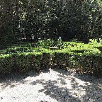 Magnolia Plantation Gardens 942 Photos 308 Reviews Botanical Gardens 3550 Ashley River