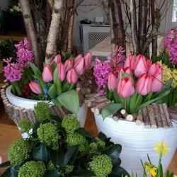 Photo Of Gardenia Flowers   Farnham, Surrey, United Kingdom. A Small  Glimpse Inside