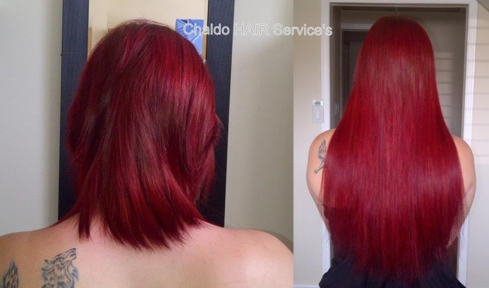 Before and after hot fusion hair extensions yelp photo of chaldo hair services kitchener on canada before and after hot pmusecretfo Image collections