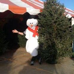 photo of north pole farms christmas trees dallas tx united states merry