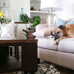 Photo Of Leonu0027s Furniture   Collingwood, ON, Canada