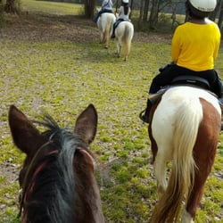 Nas Oceana Les Horseback Riding 875 D Ave Virginia Beach Va Phone Number Yelp