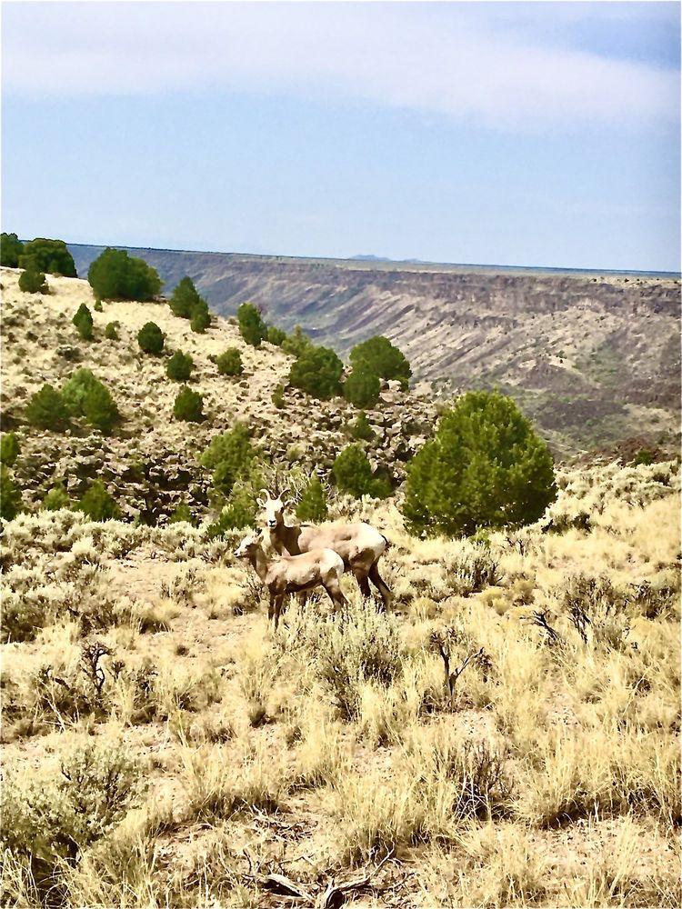 Rio Grande del Norte National Monument: New Mexico 68, Embudo, NM
