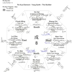 Feng shui designs feng shui 400 n coit rd north dallas dallas photo of feng shui designs dallas tx united states your bagua chart malvernweather Image collections