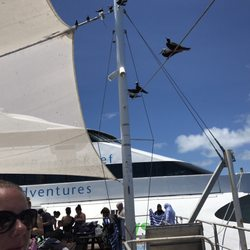 Cruise Whitsundays - Day Cruises - (New) 36 Photos & 11