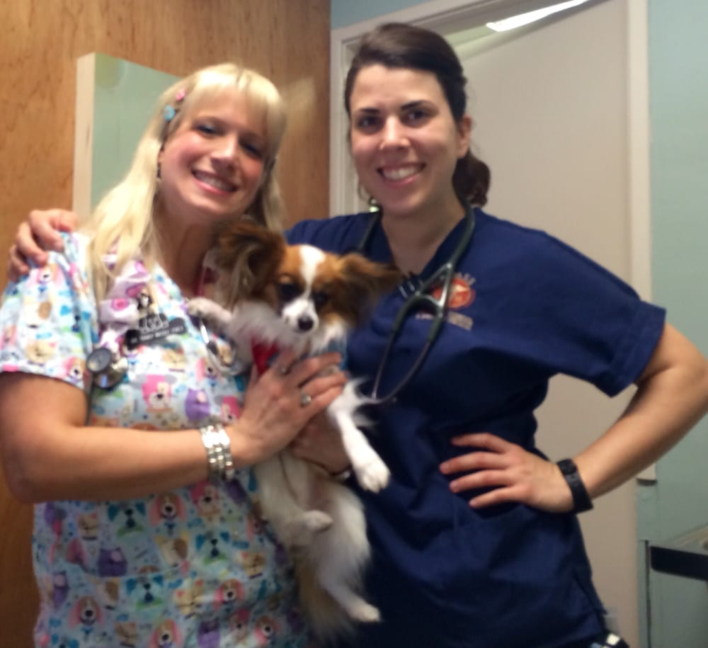 dr tracey frey and vet nurse lyndley ant aimss the