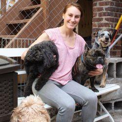 Pet groomers in new york yelp pet groomers in new york solutioingenieria Gallery