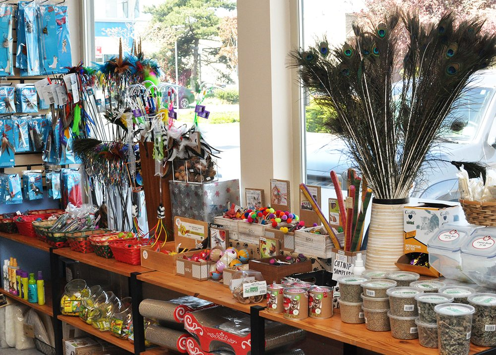 Paws & Fins Pet Shop: 1050 Hildebrand Ln NE, Bainbridge Island, WA