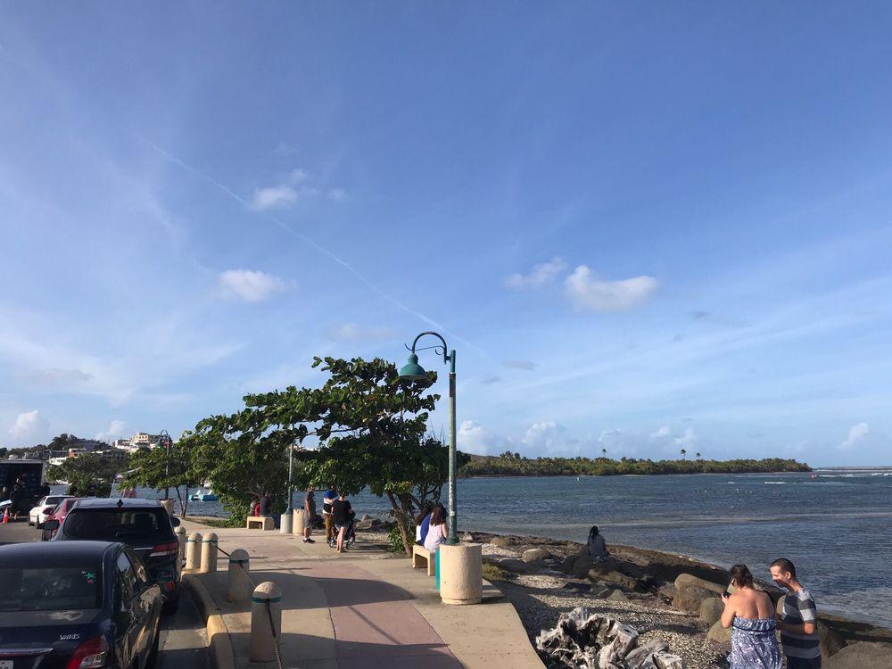 Puerto Rico Bio Bay Tours: Road 191, Km 1.5, Rio Grande, PR