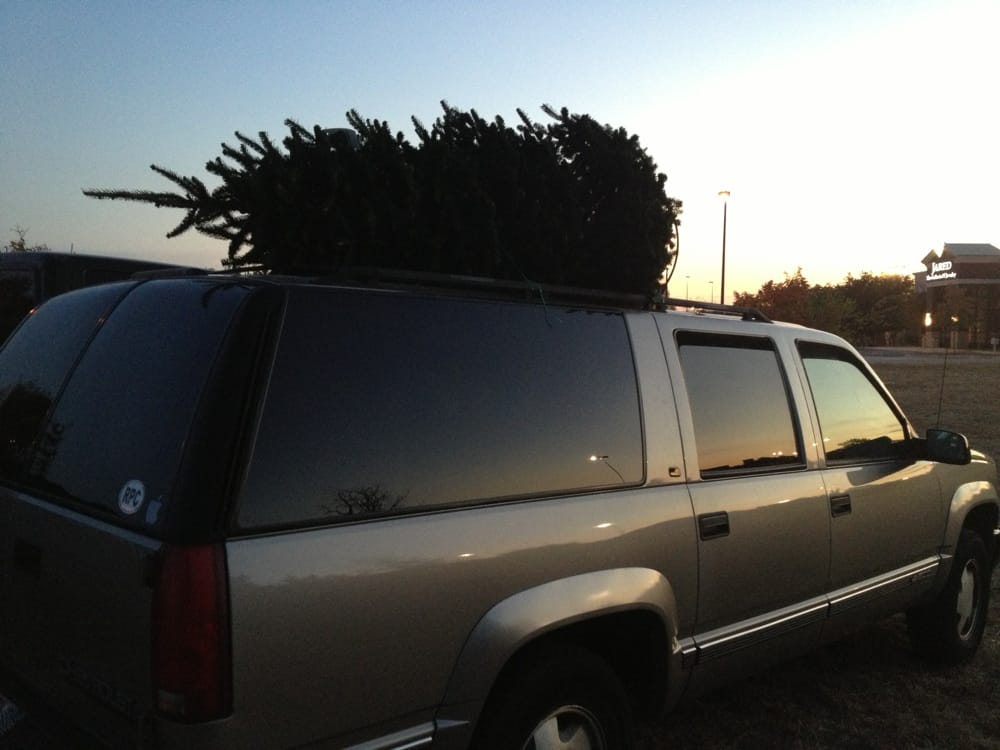 Fresh Mountain Christmas Trees: 11055 Pecan Park Blvd, Cedar Park, TX