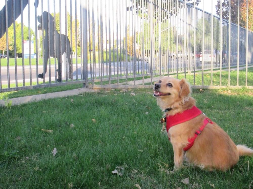 Dog Park Near Riverside Ca