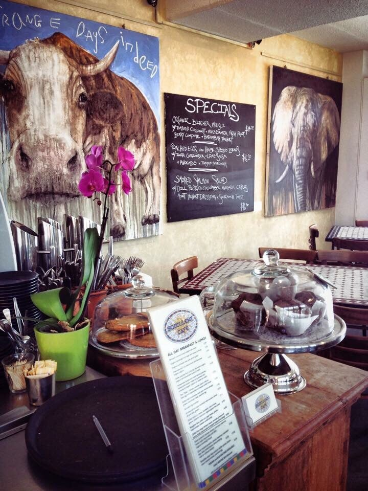 Succulent cafe cafes 3 8 byron st byron bay new south for Balcony byron bay menu
